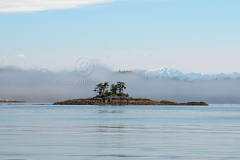 Misty-Morning-Islet