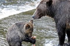 Feeding-Lesson