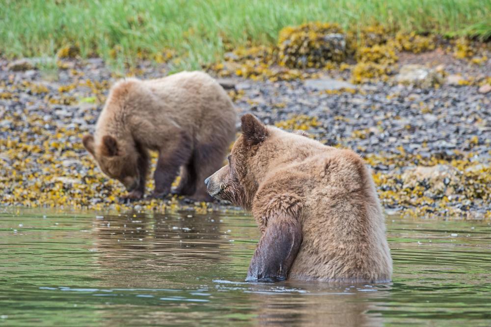Bathtime-Momma.jpg